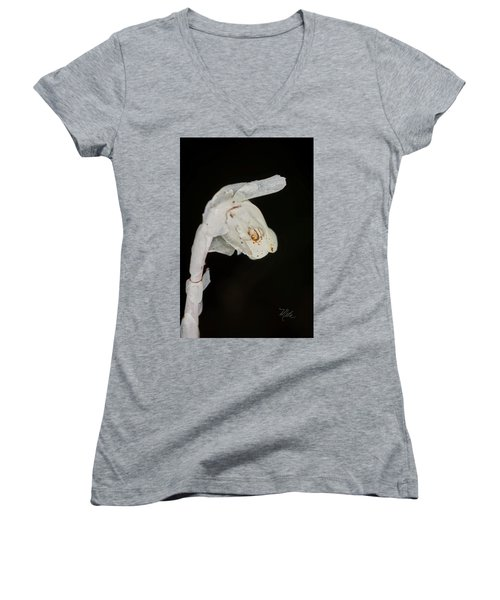 Indian Pipe Rabbit Head Women's V-Neck