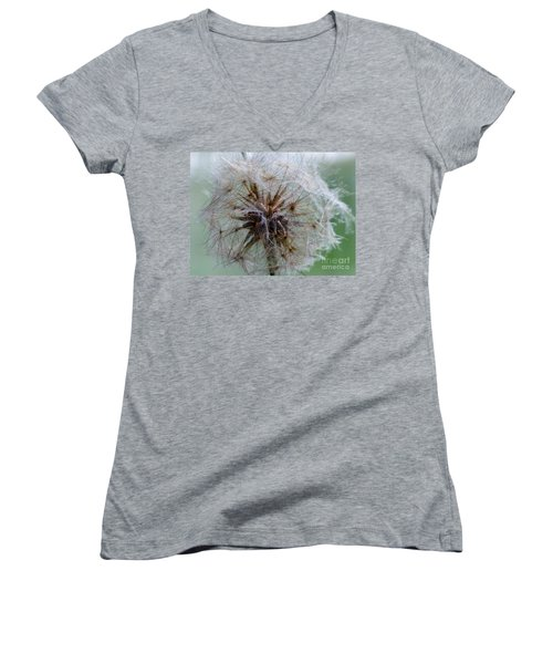 Irish Daisy Women's V-Neck