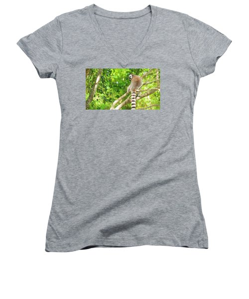 Lemur By Itself In A Tree During The Day. Women's V-Neck