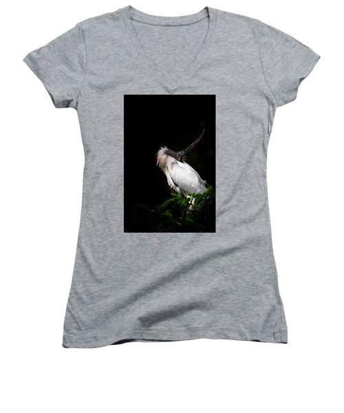 Looking For Love Women's V-Neck