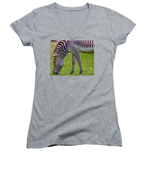 Love Zebras Women's V-Neck