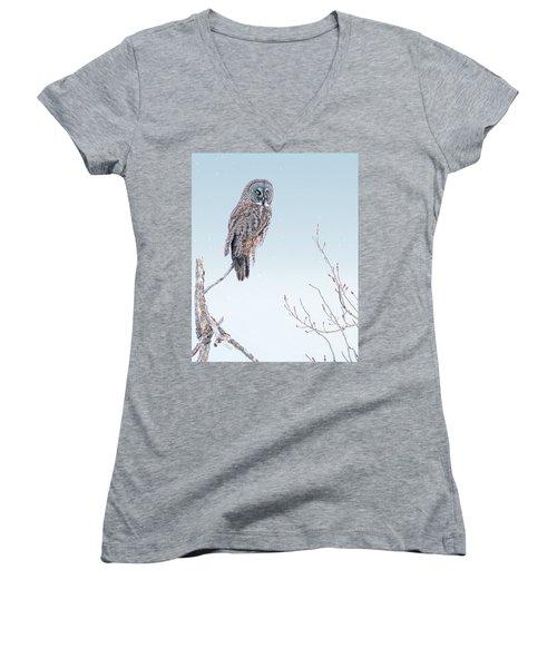 Majestic Great Gray Owl Women's V-Neck