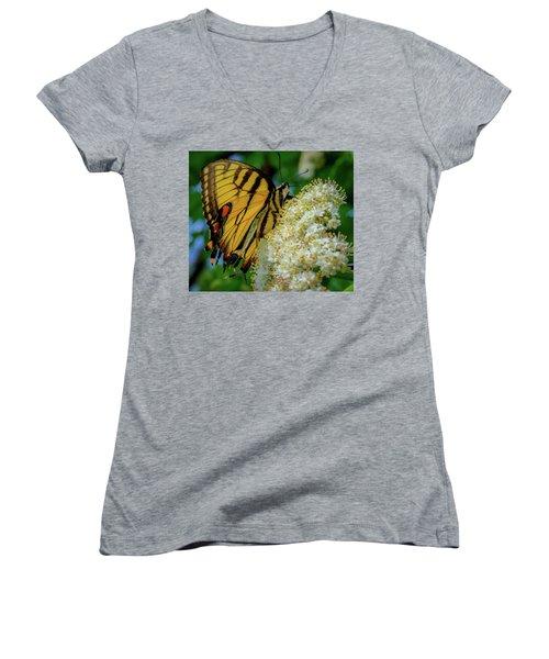 Manassas Butterfly Women's V-Neck