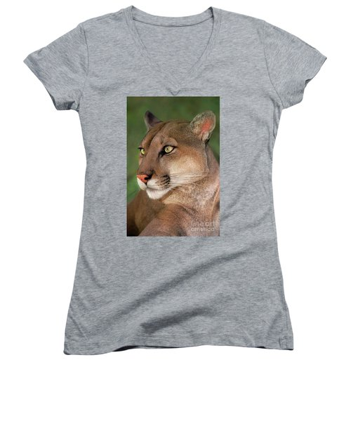 Women's V-Neck featuring the photograph Mountain Lion Portrait Wildlife Rescue by Dave Welling