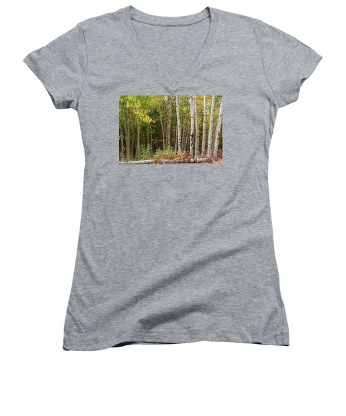 Women's V-Neck featuring the photograph Nature Fallen by James BO Insogna