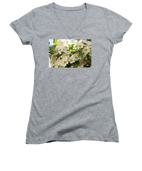 Neston.  Hawthorn Blossom. Women's V-Neck