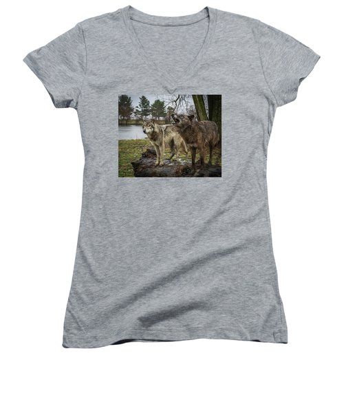 Noisy Wolf Women's V-Neck