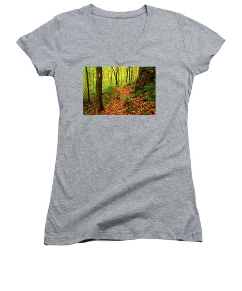 Women's V-Neck (Athletic Fit) featuring the photograph North Side Of Mount Greylock's At 2 by Raymond Salani III