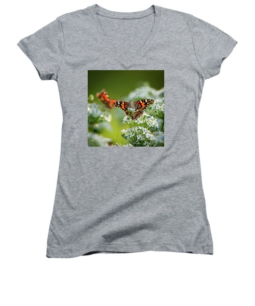 Painted Ladies Women's V-Neck