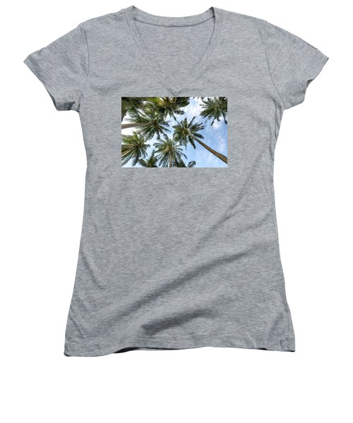 Palms  Beach Women's V-Neck
