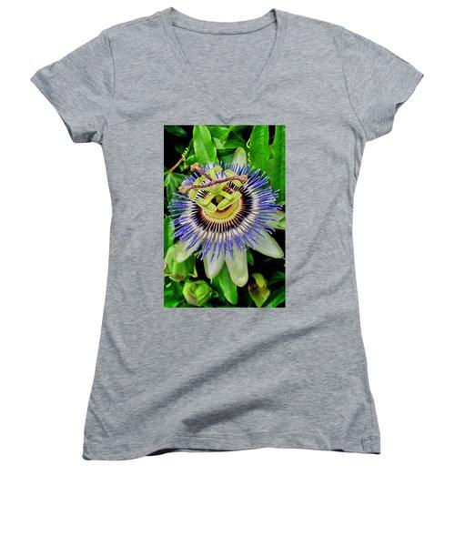 Passion Flower Bee Delight Women's V-Neck