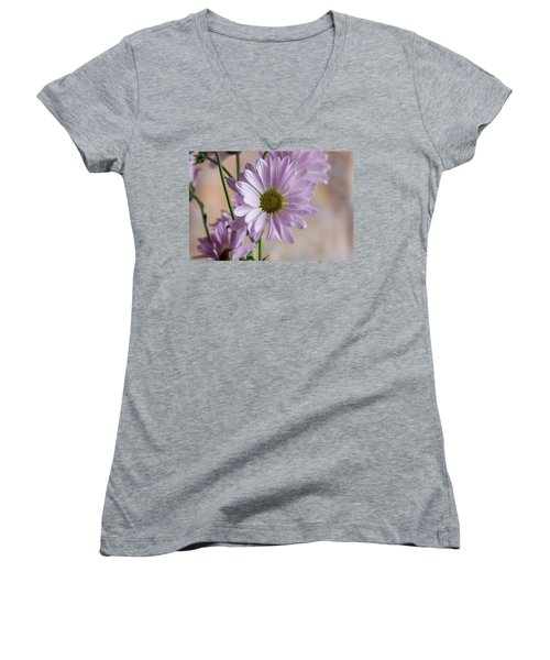 Pink Daisies-5 Women's V-Neck