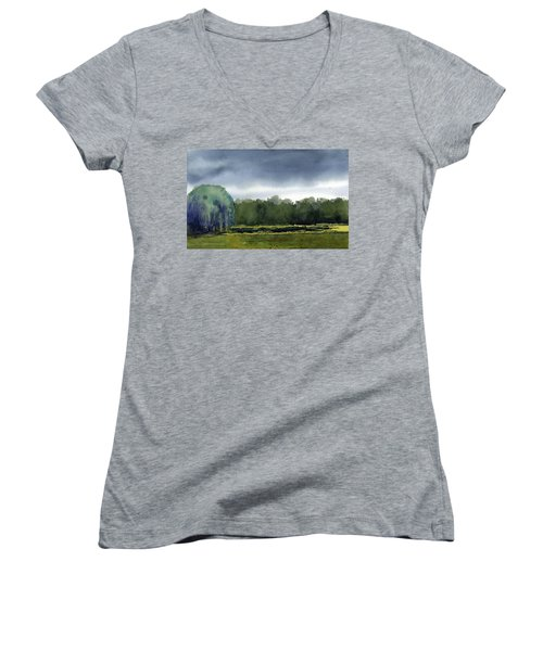 Pond At Taliesin Women's V-Neck