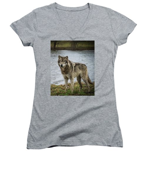 Posing By The Water Women's V-Neck