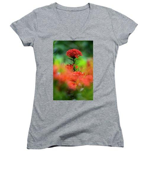 Red Flower Women's V-Neck