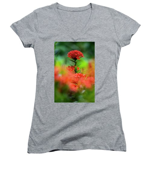 Red Flower Women's V-Neck