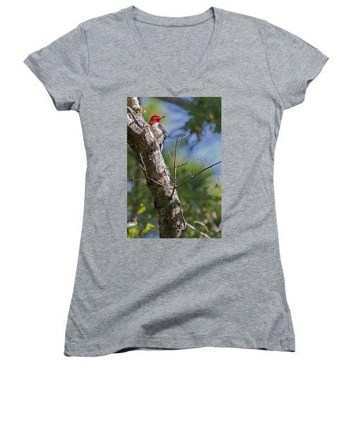 Redhead Woodpecker Women's V-Neck