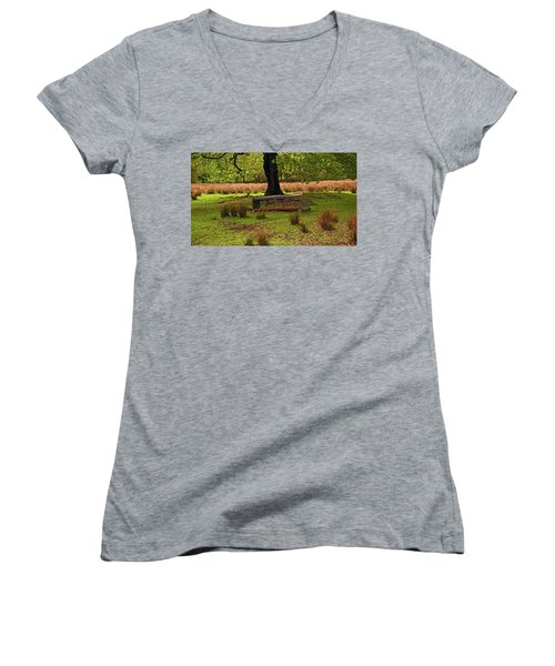 Rivington. Terraced Gardens. Feeding Trough. Women's V-Neck
