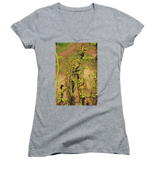 Rivington Terraced Gardens. Fern Frond. Women's V-Neck