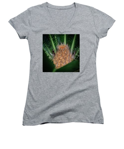 Sago Palm Women's V-Neck