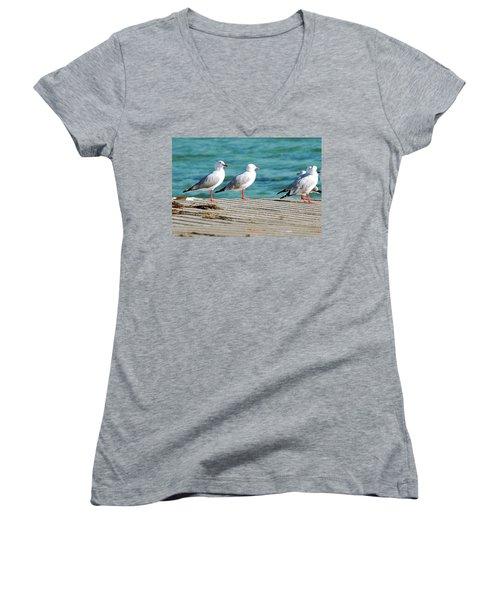 Seagulls Women's V-Neck