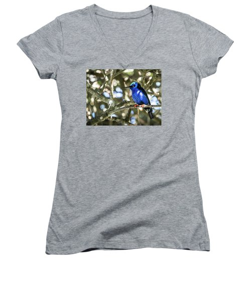 Shades Of Blue Women's V-Neck