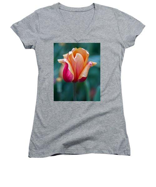 Shimmering Tulip Women's V-Neck