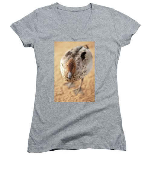 Small Duck On The Farm Women's V-Neck