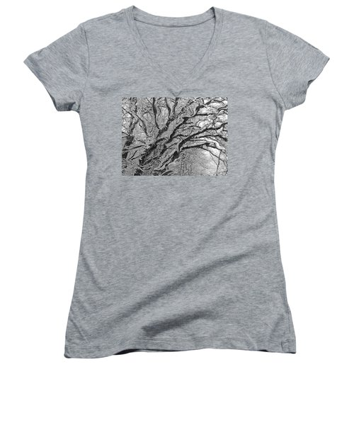 Snow Melt Women's V-Neck