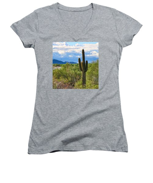 Sonoran Desert Landscape Post-monsoon Women's V-Neck