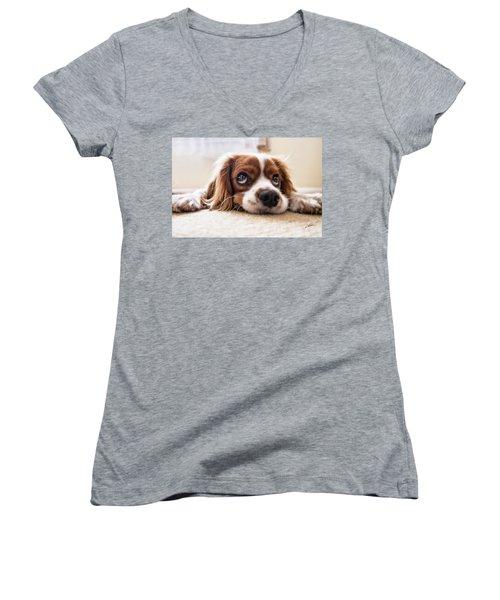 Spaniel Puppy Dwp2785074 Women's V-Neck