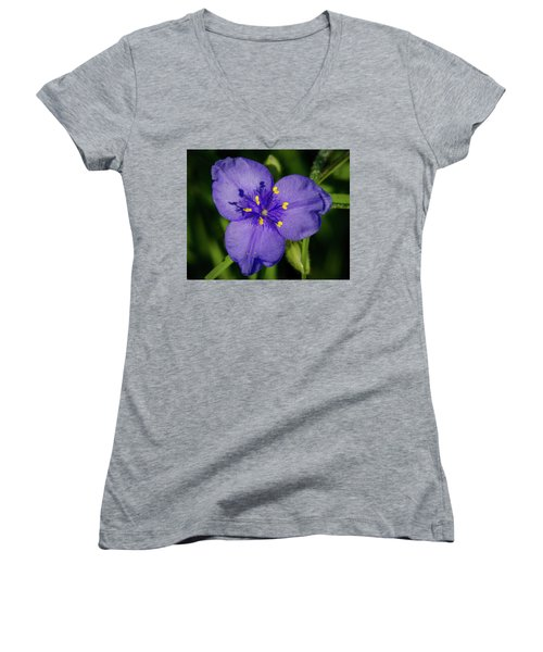 Spiderwort Flower Women's V-Neck
