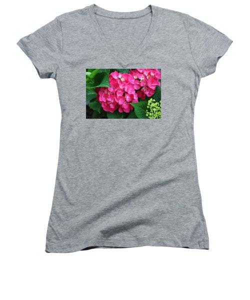 Spring Hydrangea Women's V-Neck