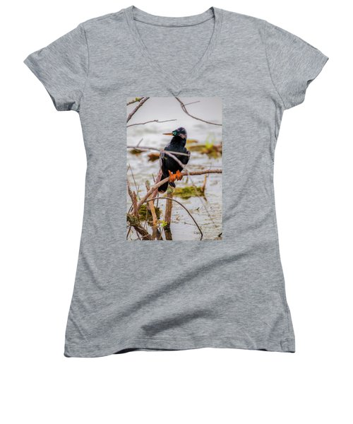 Women's V-Neck featuring the photograph Stunning Anhinga by Kevin Banker