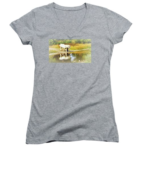 Leading The Horses To Water Women's V-Neck