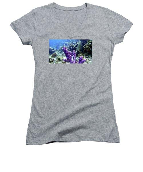 The Purple Sponge Women's V-Neck