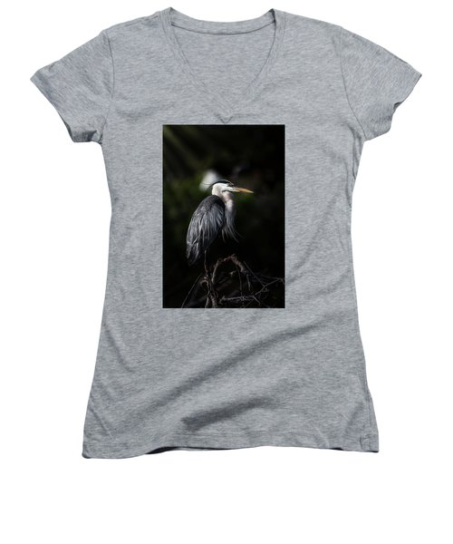 Watching And Waiting Women's V-Neck