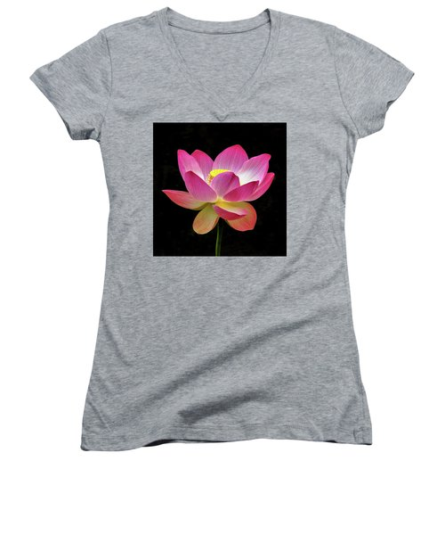Water Lily In The Light Women's V-Neck