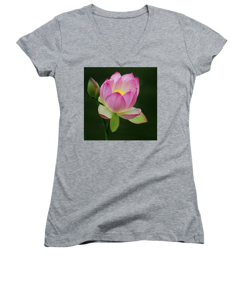 Water Lily In The Pond Women's V-Neck