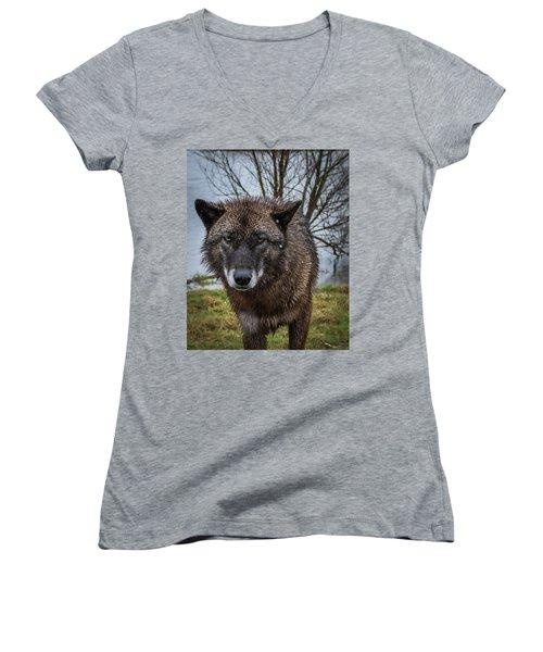 Wet Wolf Women's V-Neck