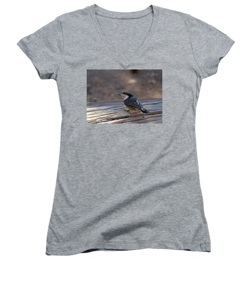 White Breasted Nuthatch Women's V-Neck