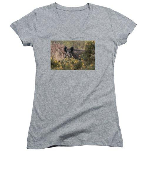 Wild Boar Sow Women's V-Neck