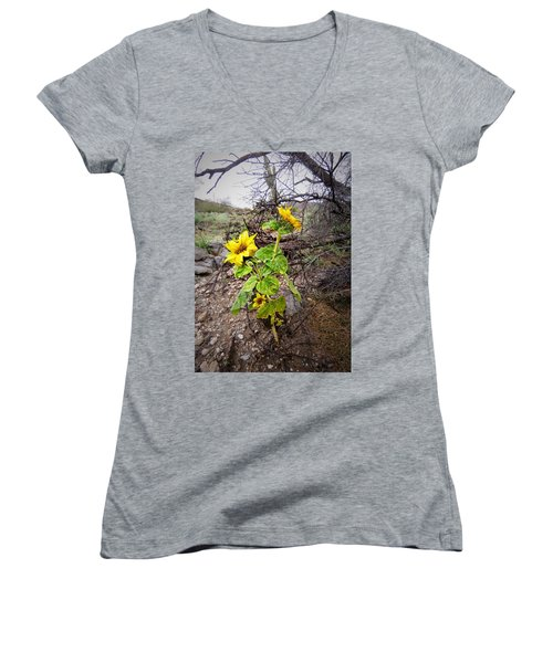 Wild Desert Sunflower Women's V-Neck