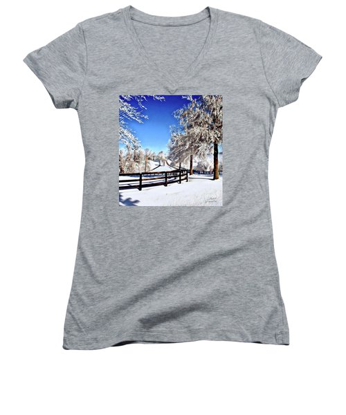 Wintry Lane Women's V-Neck