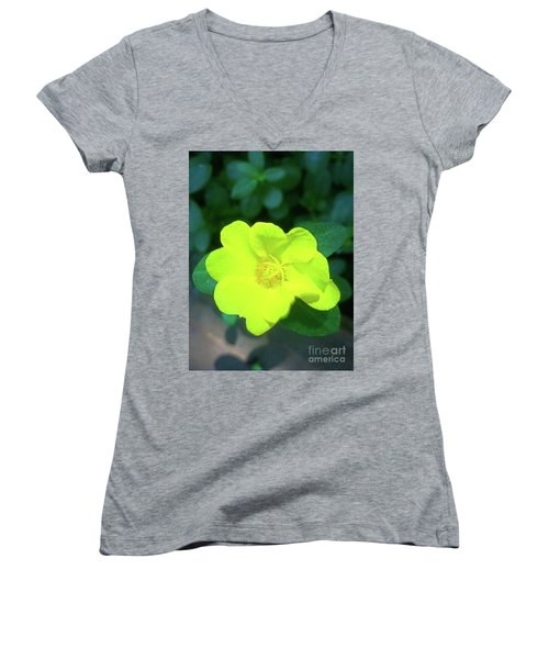 Yellow Hypericum - St Johns Wort Women's V-Neck