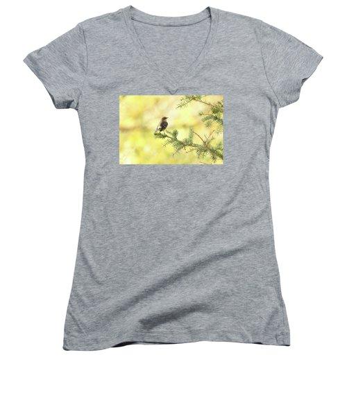Yellow-rumped Warbler Women's V-Neck