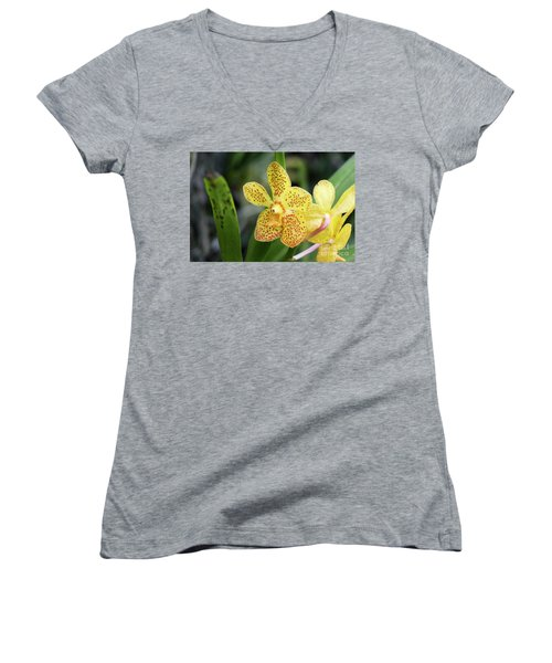 Yellow Spotted Orchids Women's V-Neck
