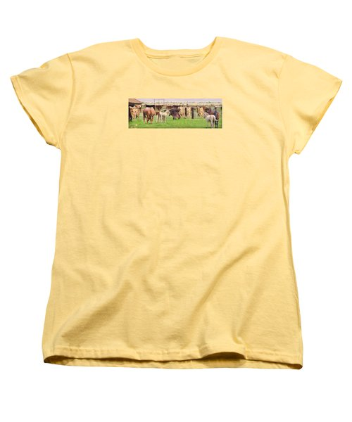 Women's T-Shirt (Standard Cut) featuring the photograph Cow Hides by Marilyn Diaz