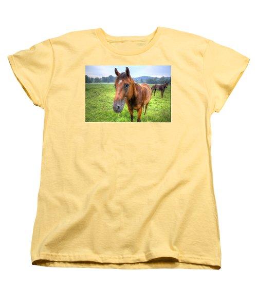 Horses In A Field Women's T-Shirt (Standard Cut) by Jonny D