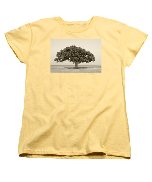 The Lonely Tree Women's T-Shirt (Standard Cut) by Charles Beeler